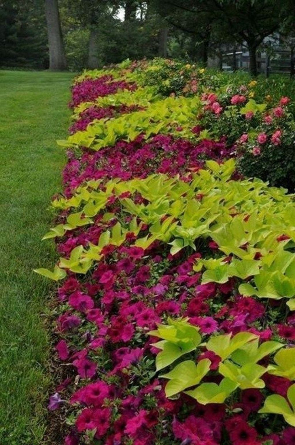 Beautiful Flower Beds Design Ideas In Front Of House 07
