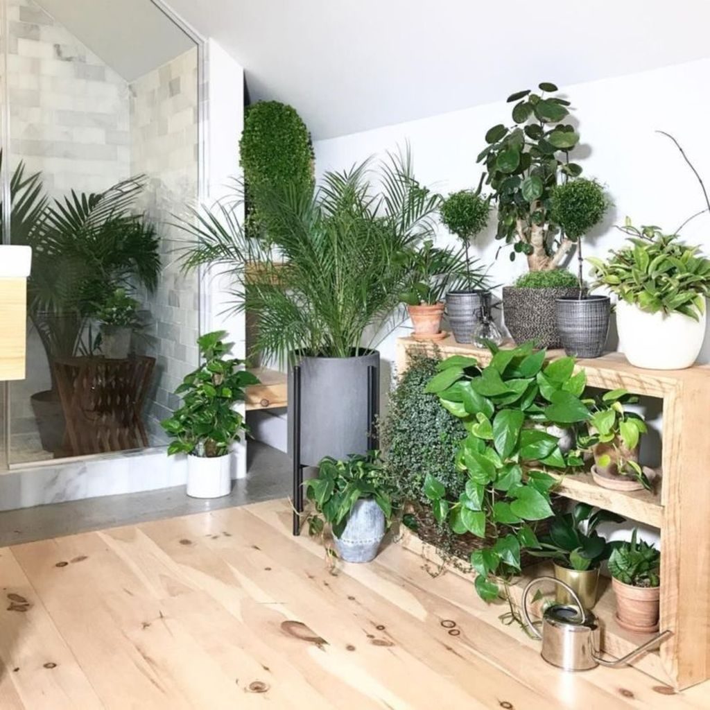 Inspiring Jungle Bathroom Decor Ideas 24