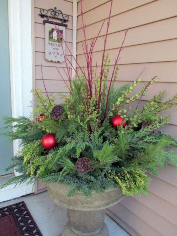 Inspiring Winter Container Gardening Ideas 13