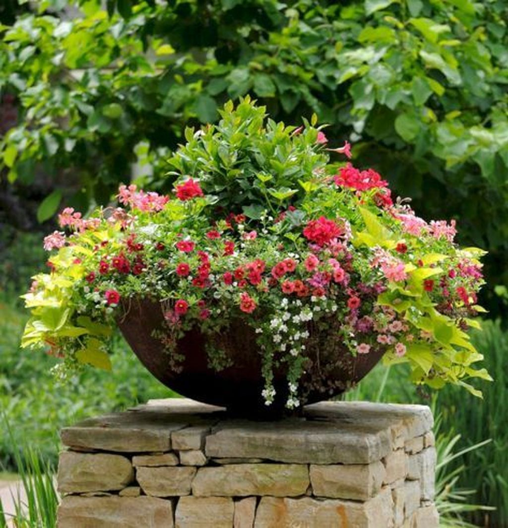 Inspiring Winter Container Gardening Ideas 21