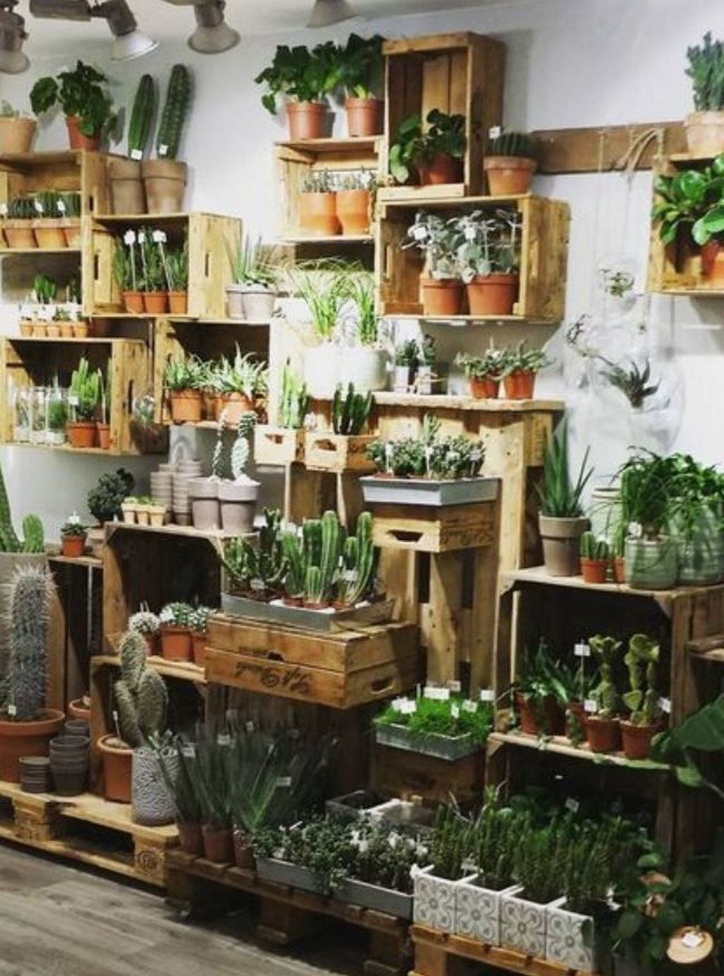 Lovely Small Home Garden Ideas That You Will Want 15