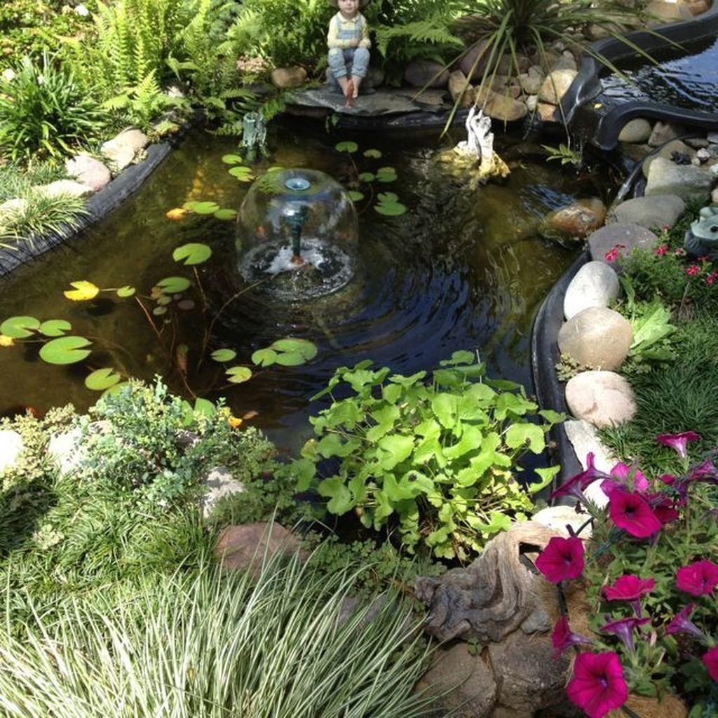 Nice Fish Ponds Backyard Decoration Ideas 14