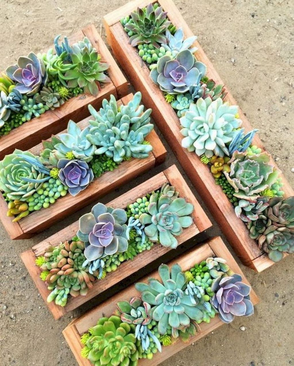Beautiful Outdoor Succulent Planter Ideas 12