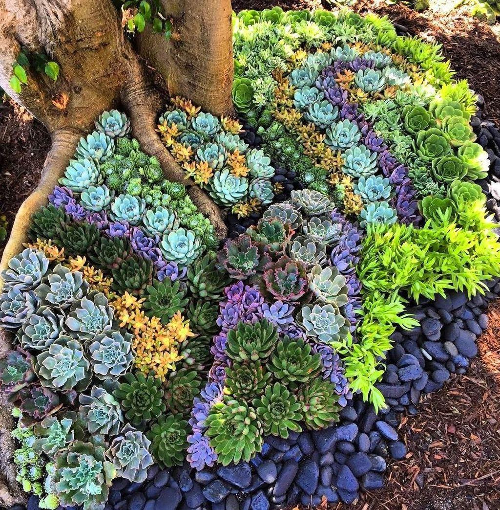 Beautiful Outdoor Succulent Planter Ideas 25