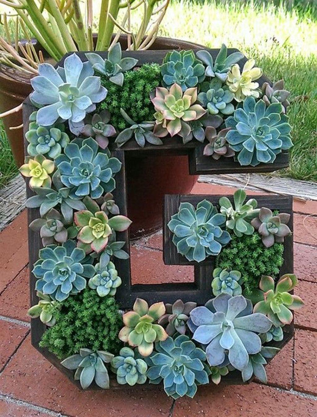 Beautiful Outdoor Succulent Planter Ideas 29