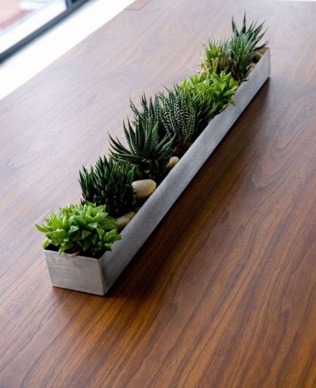 Inspiring Indoor Garden Succulent Ideas 19