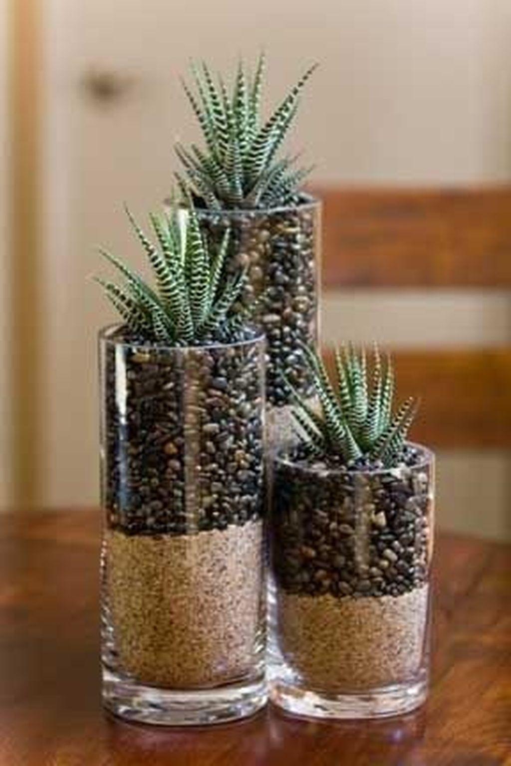 Inspiring Indoor Garden Succulent Ideas 23