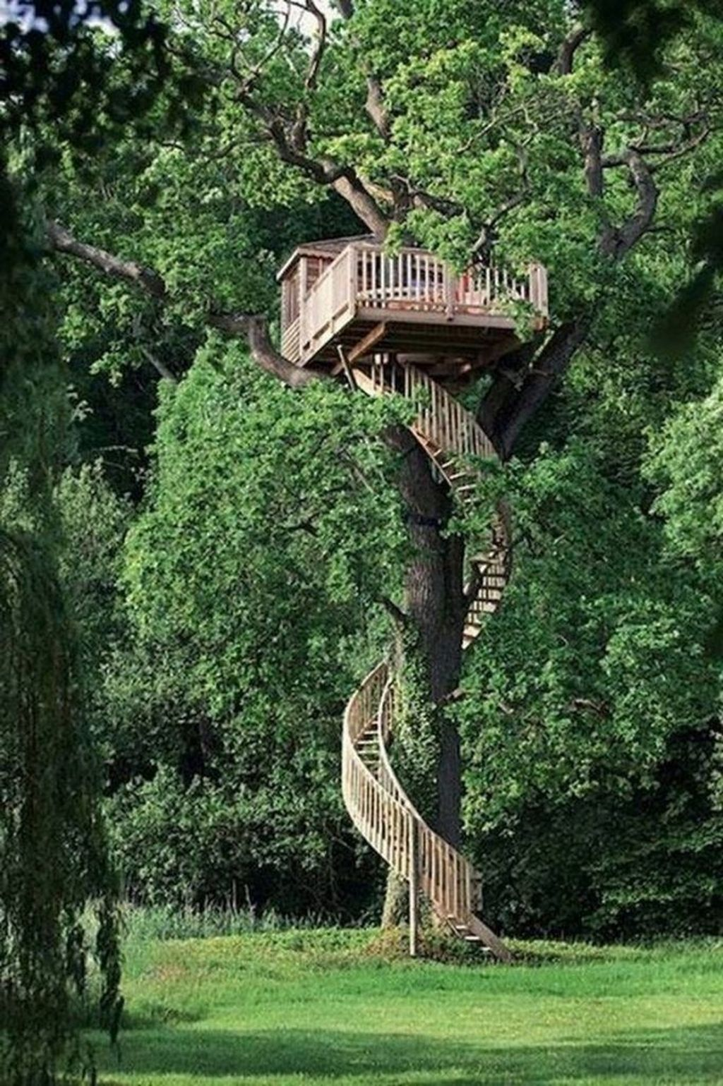 Stunning Tree House Designs You Never Seen Before 05
