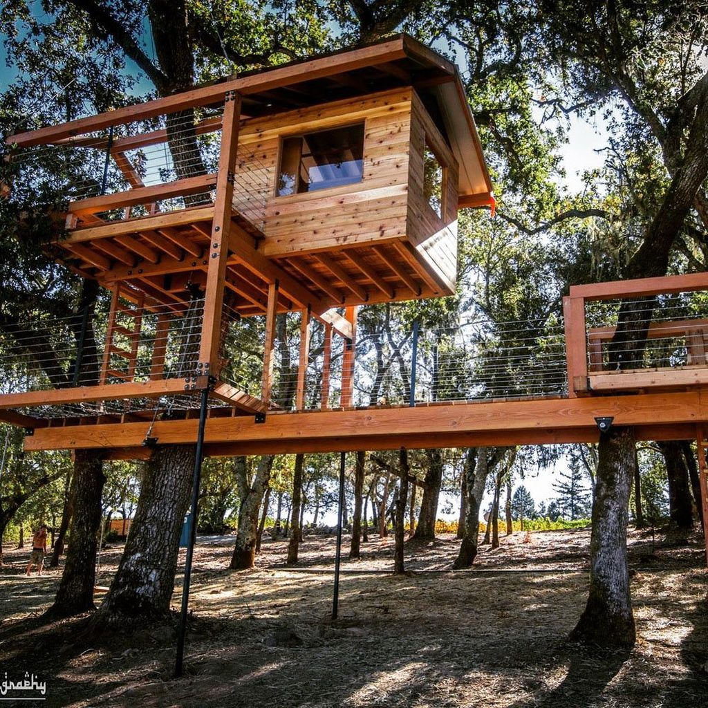 Stunning Tree House Designs You Never Seen Before 11