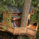 Stunning Tree House Designs You Never Seen Before 23