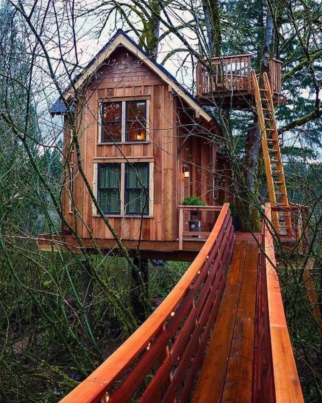 Stunning Tree House Designs You Never Seen Before 27