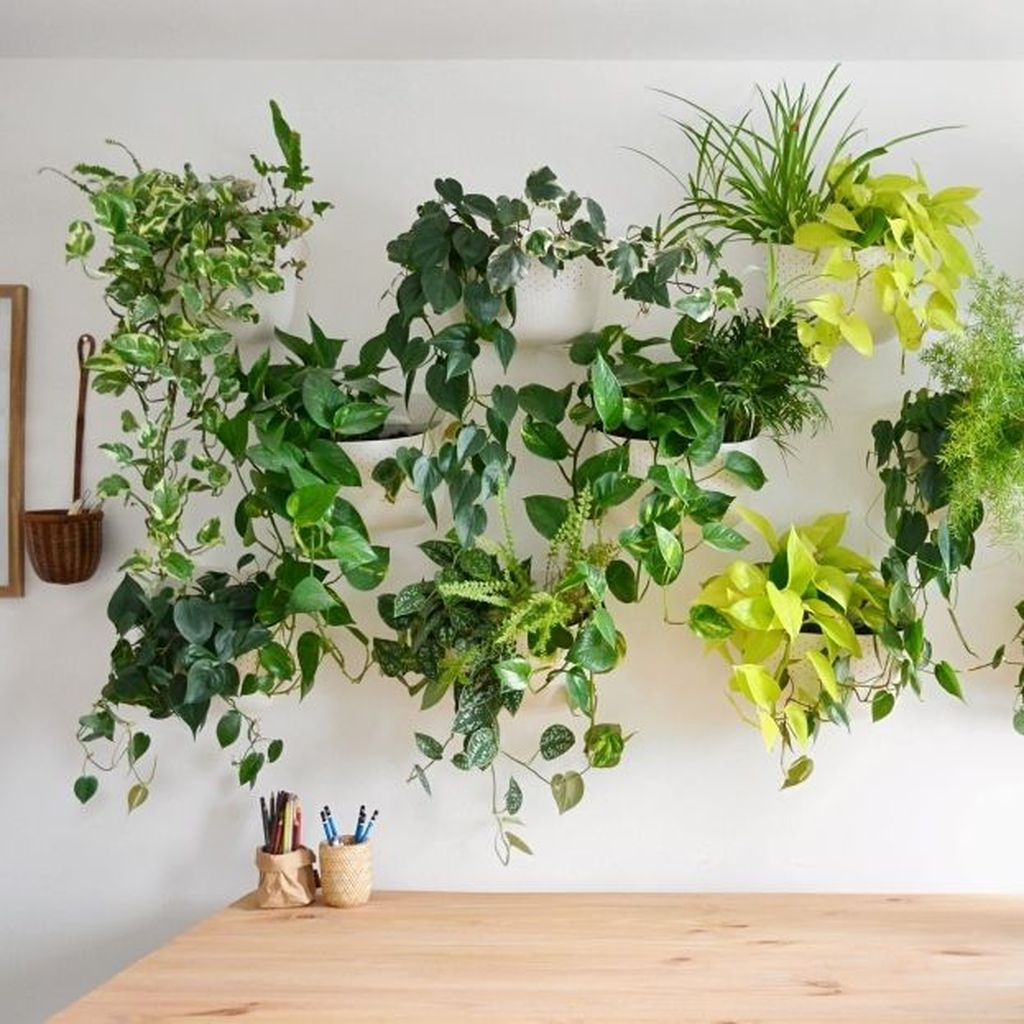Beautiful Living Wall Indoor Decoration Ideas To Be A Fresh Home 06