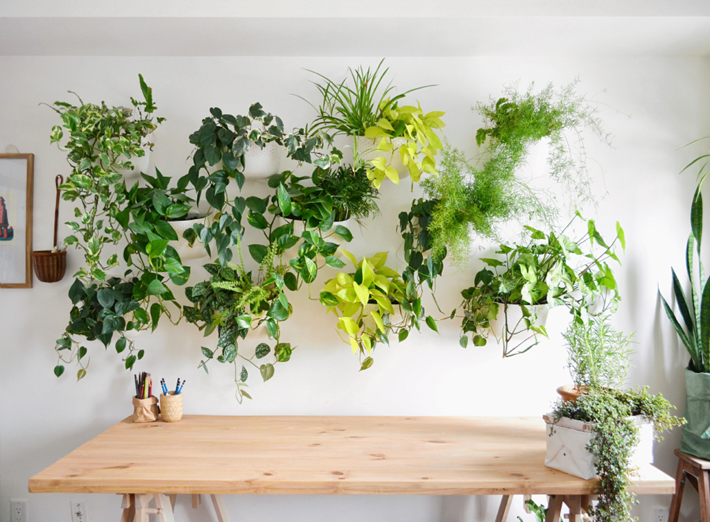 Beautiful Living Wall Indoor Decoration Ideas To Be A Fresh Home 22