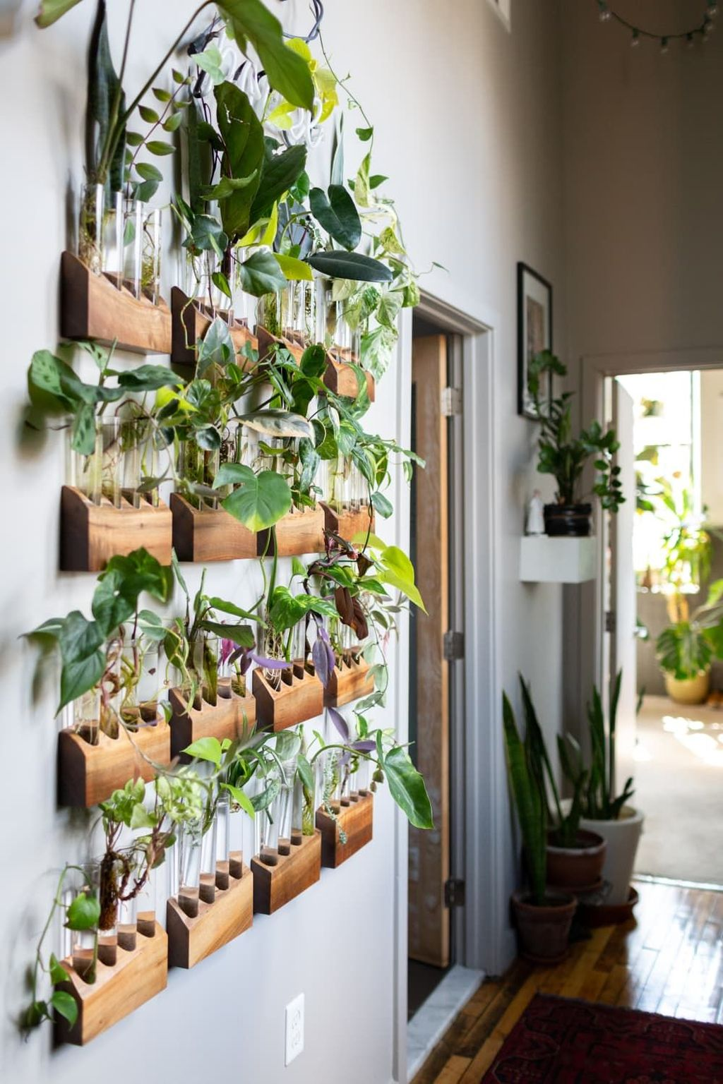 Beautiful Living Wall Indoor Decoration Ideas To Be A Fresh Home 26