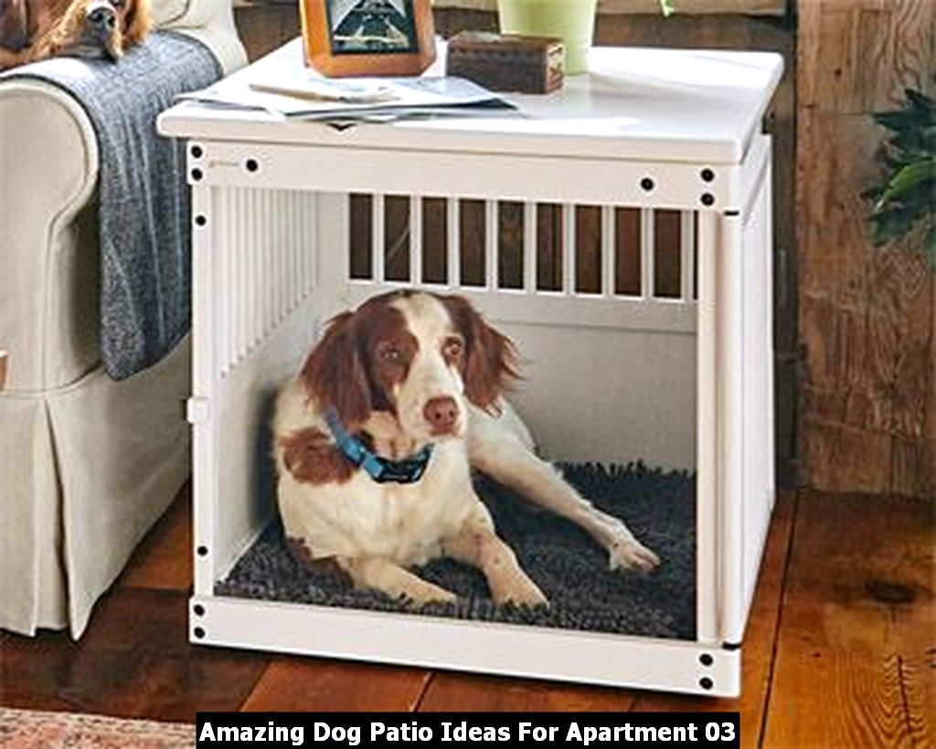 Amazing Dog Patio Ideas For Apartment 03
