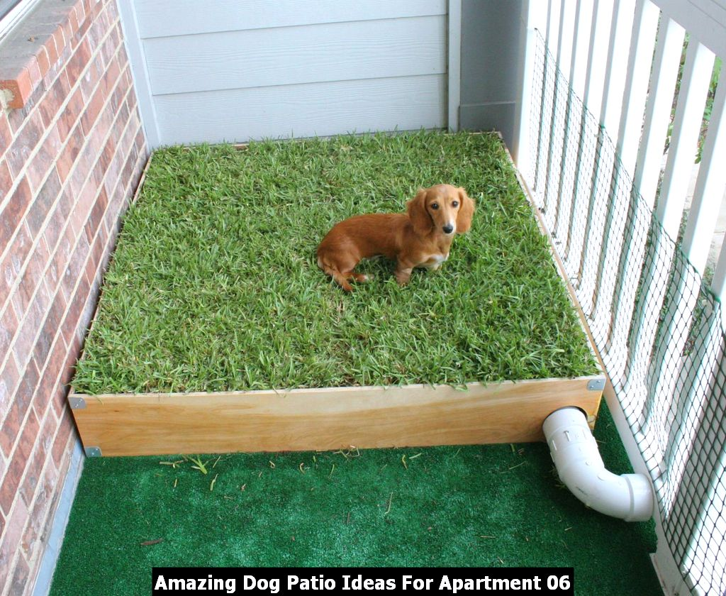 Amazing Dog Patio Ideas For Apartment 06