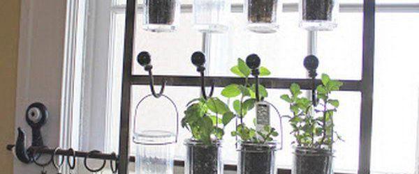 Window Herb Garden Ideas