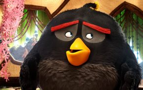 angry-birds06