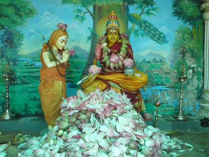 Adi_shankara_lotus1