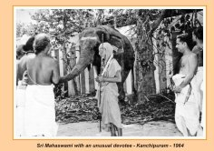 periyava-chronological-215