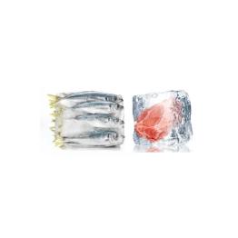 Frozen Meat & Fish