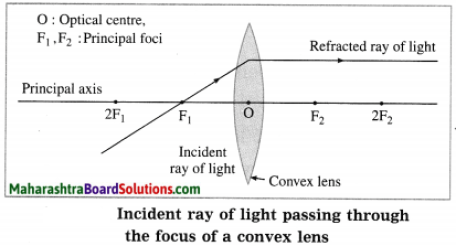 Maharashtra Board Class 10 Science Solutions Part 1 Chapter 7 Lenses 19