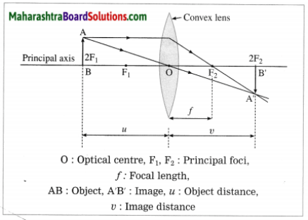 Maharashtra Board Class 10 Science Solutions Part 1 Chapter 7 Lenses 6