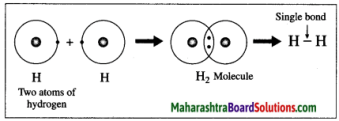 Maharashtra Board Class 10 Science Solutions Part 1 Chapter 9 Carbon Compounds 9