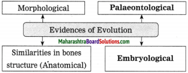 Maharashtra Board Class 10 Science Solutions Part 2 Chapter 1 Heredity and Evolution 2