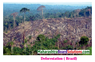Maharashtra Board Class 10 Geography Solutions Chapter 4 Climate 33