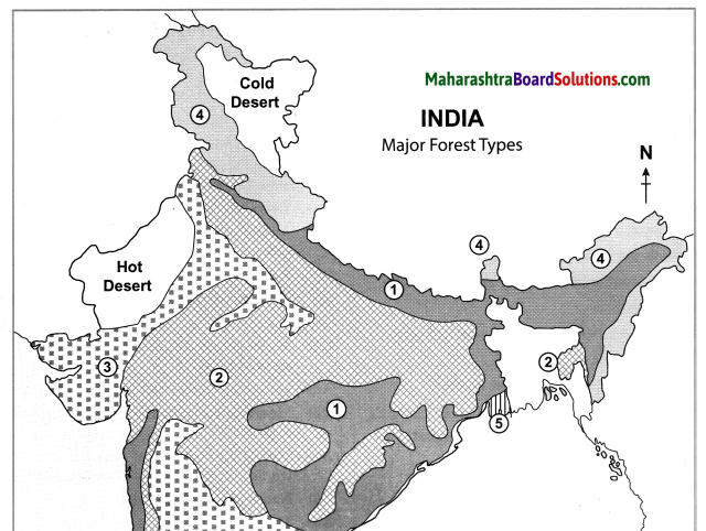 Maharashtra Board Class 10 Geography Solutions Chapter 5 Natural Vegetation and Wildlife 13