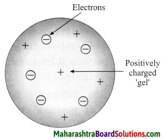 Maharashtra Board Class 8 Science Solutions Chapter 5 Inside the Atom 2