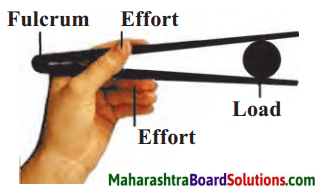 Maharashtra Board Class 6 Science Solutions Chapter 12 Simple Machines 4