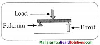 Maharashtra Board Class 6 Science Solutions Chapter 12 Simple Machines 7