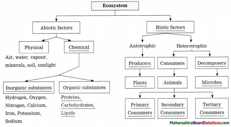 Maharashtra Board Class 8 Science Solutions Chapter 18 Ecosystems 10