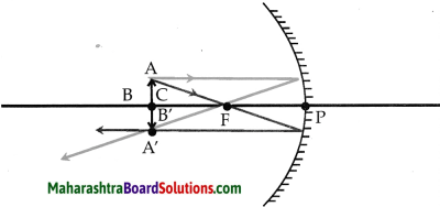 Maharashtra Board Class 9 Science Solutions Chapter 11 Reflection of Light 5