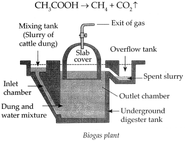Maharashtra Board Class 9 Science Solutions Chapter 13 Carbon An Important Element 19