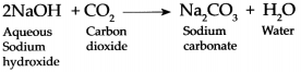 Maharashtra Board Class 9 Science Solutions Chapter 13 Carbon An Important Element 8