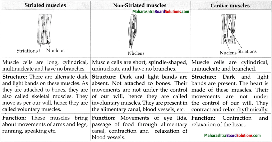 Maharashtra Board Class 9 Science Solutions Chapter 17 Introduction to Biotechnology 5