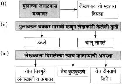 Maharashtra Board Class 10 Marathi Aksharbharati Solutions Chapter 3 शाल 17