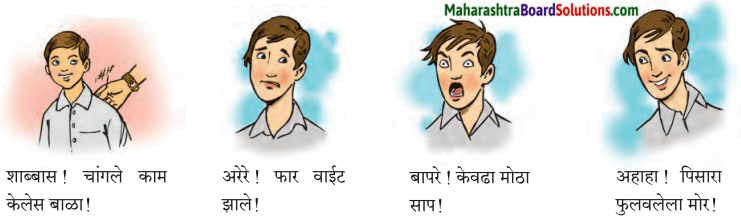 Maharashtra Board Class 7 Marathi Solutions Chapter 10 पंडिता रमाबाई 3