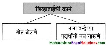 Maharashtra Board Class 8 Marathi Solutions Chapter 4 आपण सारे एक 3