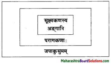 Maharashtra Board Class 10 Sanskrit Amod Solutions Chapter 5 स एव परमाणुः 5