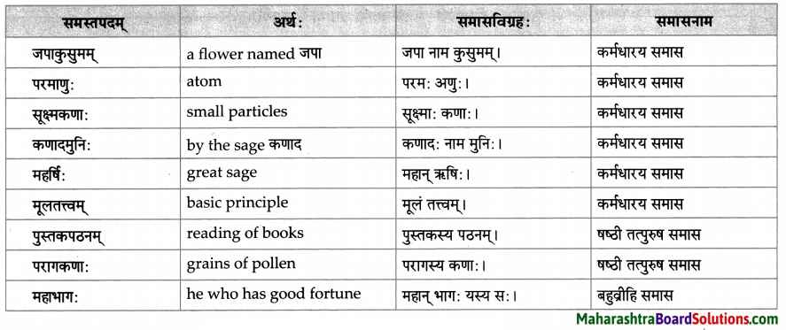 Maharashtra Board Class 10 Sanskrit Amod Solutions Chapter 5 स एव परमाणुः 6