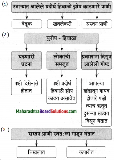Maharashtra Board Class 9 Marathi Aksharbharati Solutions Chapter 11 आभाळातल्या पाऊलवाटा 12