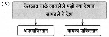 Maharashtra Board Class 9 Marathi Aksharbharati Solutions Chapter 11 आभाळातल्या पाऊलवाटा 21