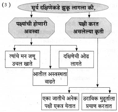 Maharashtra Board Class 9 Marathi Aksharbharati Solutions Chapter 11 आभाळातल्या पाऊलवाटा 29