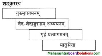 Maharashtra Board Class 10 Sanskrit Anand Solutions Chapter 9 आदिशङ्कराचार्यः 6
