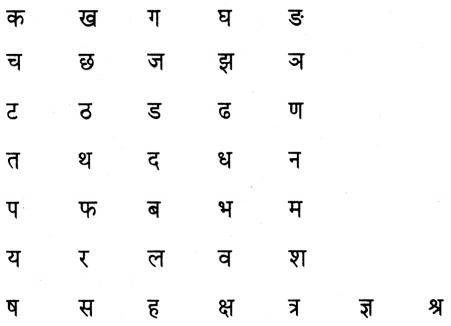 Maharashtra Board Class 5 Hindi Solutions स्वयं सध्ययन 3