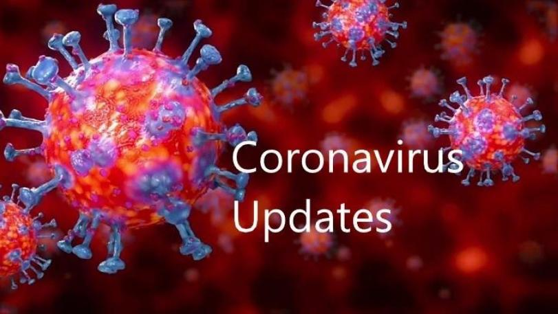 PH Covid-19 recoveries rise by 311